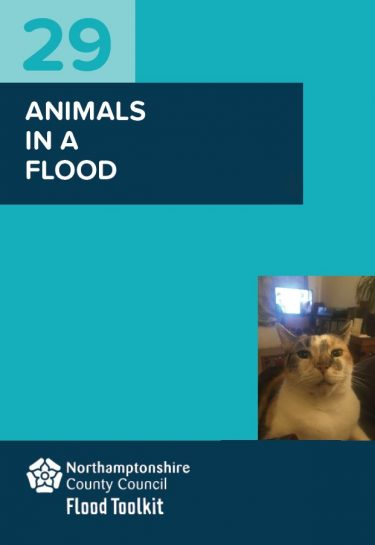 Flood Guide 29: Keeping Animals Safe in a Flood