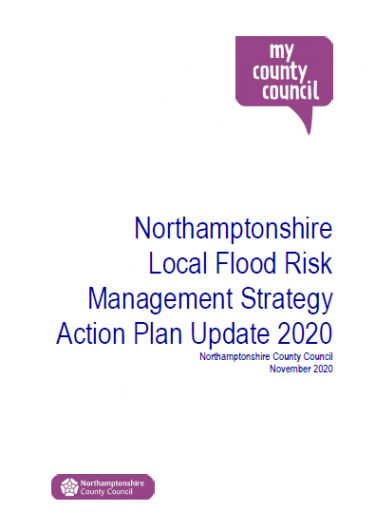 Download LFRMS Action Plan